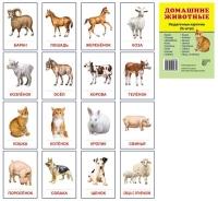 Домашние животные.16 раздаточных карточек с текстом
